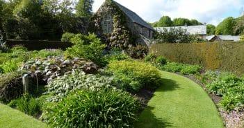 paysagiste création jardin