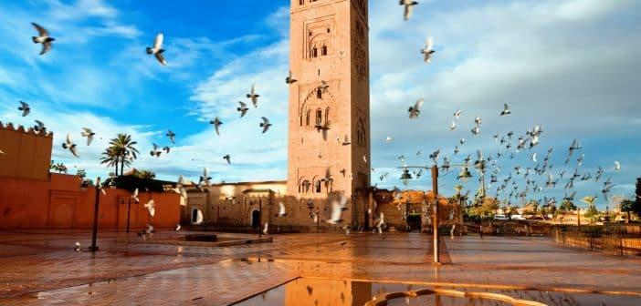 quelles sont les diff rentes raisons de choisir la destination marrakech. Black Bedroom Furniture Sets. Home Design Ideas