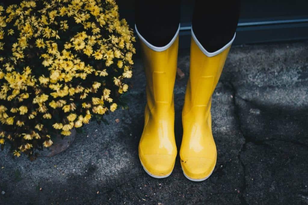 bottes en caoutchouc équipement du jardinier typique