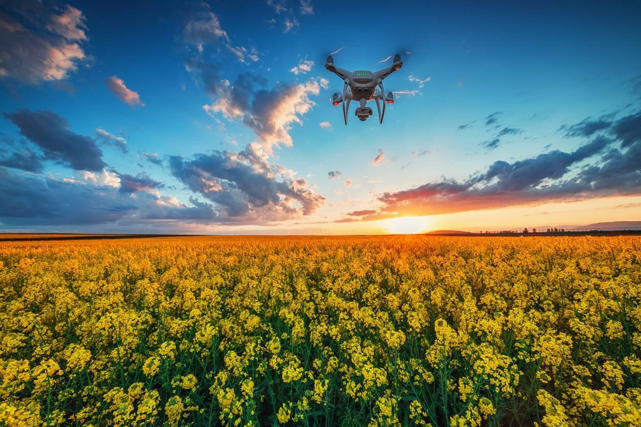 drone exploitation agricole