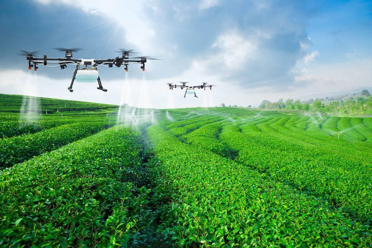 drone utilisation exploitation agricole