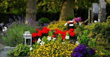 Un cimetière avec des fleurs