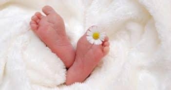 Comment créer un faire-part de naissance ?